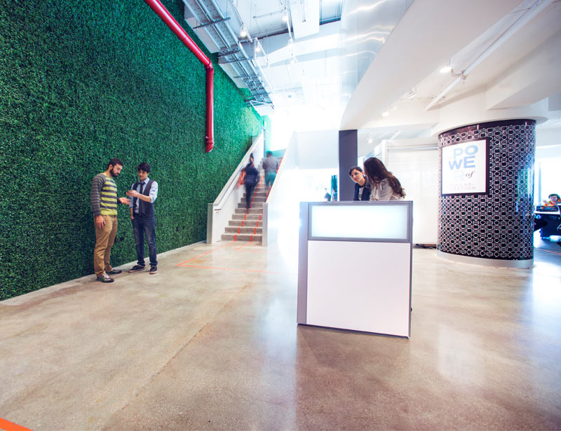 The green wall and reception at Axis Space
